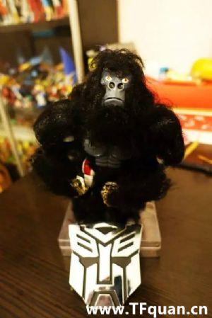 迷友DIY—带毛的猩猩队长