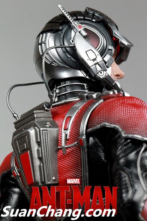 HotToys MMS308《蚁人 Ant-Man》 模玩 第1张