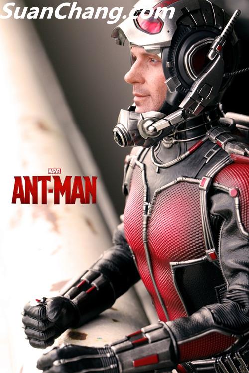HotToys MMS308《蚁人 Ant-Man》 模玩 第10张