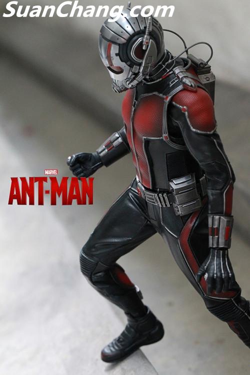 HotToys MMS308《蚁人 Ant-Man》 模玩 第13张
