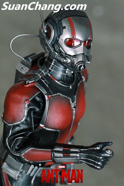 HotToys MMS308《蚁人 Ant-Man》 模玩 第14张
