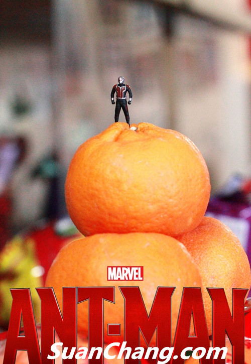 HotToys MMS308《蚁人 Ant-Man》 模玩 第25张
