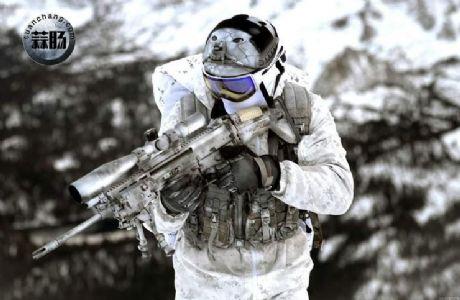2016会场版雪地海豹NSW机枪手素组分享