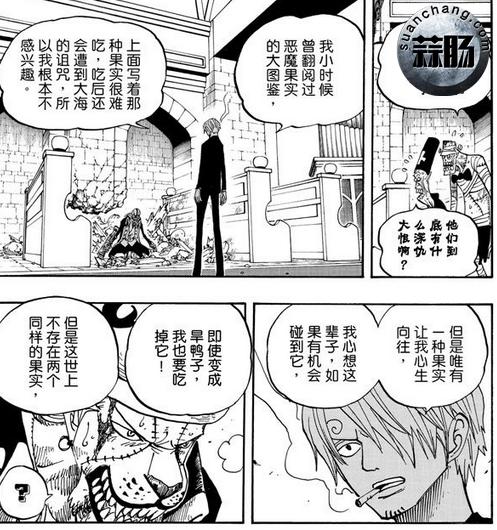 海贼王十大未解之谜 D到底代表着什么呢? 动漫 第6张