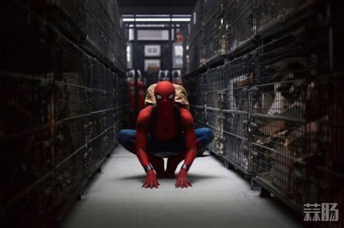 《蜘蛛侠:英雄归来》终极海报来袭 小蜘蛛秃鹰海上激战! 动漫 第2张