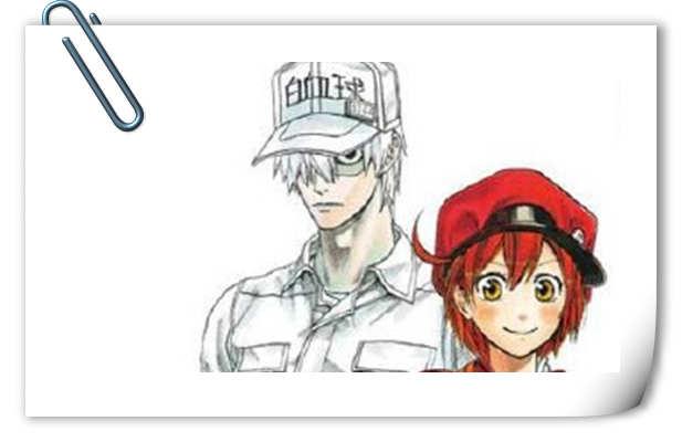 拟人动画来啦!《工作细胞》宣布TV动画化 七月开始放送!