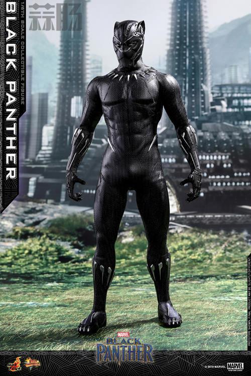 Hot Toys 推出MARVEL 超级英雄角色《黑豹》黑豹1:6比例珍藏 模玩 第1张