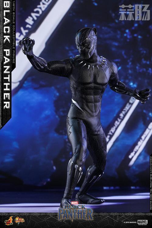 Hot Toys 推出MARVEL 超级英雄角色《黑豹》黑豹1:6比例珍藏 模玩 第3张