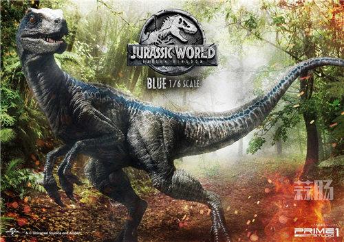 Prime 1 Studio 新品:1/6 《侏罗纪世界2》Blue布鲁来袭! 模玩 第7张