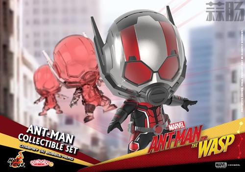 Hot Toys推出《蚁人2:黄蜂女现身》COSBABY套装 模玩 第7张
