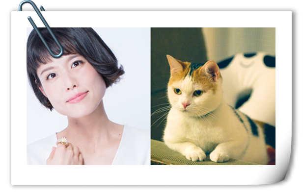 泽城美雪、前野智昭将为电影《旅猫日记》的猫与狗配音!