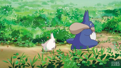 《龙猫》年底上映? 国内或能看到更多宫崎骏的动画 宫崎骏 龙猫 动漫  第1张
