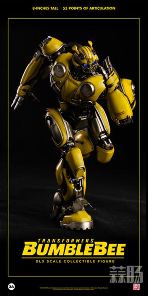 3A《大黄蜂》甲壳虫版大黄蜂将于12月1日发售 变形金刚 第9张