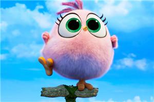 《愤怒的小鸟2》发布新正式中字预告,将有希望登陆中国