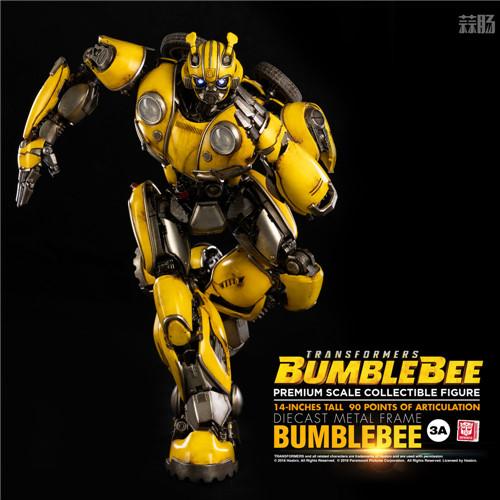 3A公开《变形金刚大黄蜂》14英寸大黄蜂可动模型 变形金刚 第2张