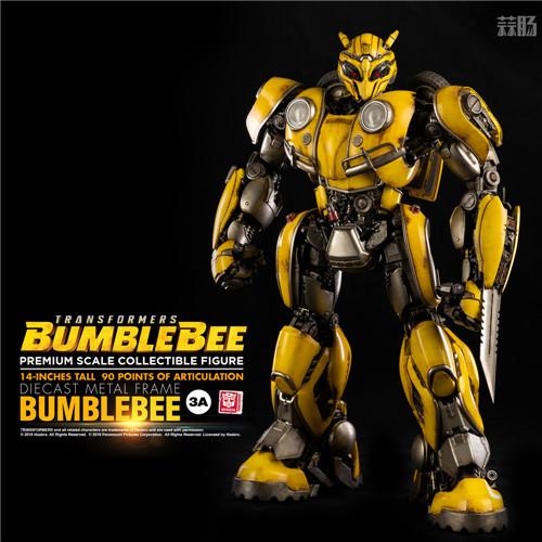 3A公开《变形金刚大黄蜂》14英寸大黄蜂可动模型 变形金刚 第8张