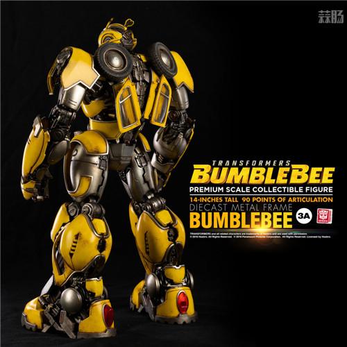 3A公开《变形金刚大黄蜂》14英寸大黄蜂可动模型 变形金刚 第12张