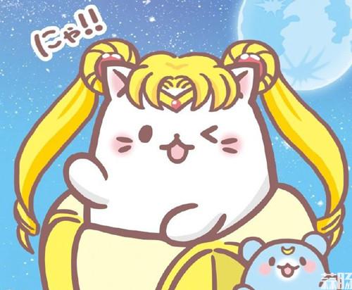 TV动画《香蕉喵》新系列制作决定 村濑步 梶裕贵 香蕉喵 动漫  第5张