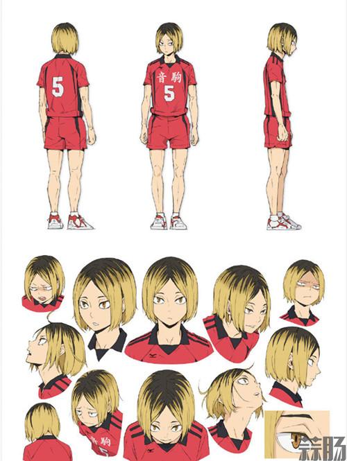 """《排球少年》全新OVA动画""""陆VS空""""主视觉图公开! 动漫 第5张"""