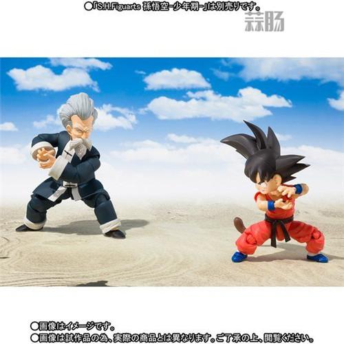 万代魂商店公布SHF《龙珠》龟仙人官图 模玩 第8张