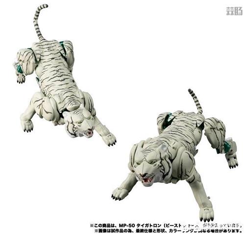 Takara Tomy变形金刚MP-50白虎勇士新产品图 野兽形态优秀 变形金刚 第1张