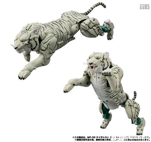 Takara Tomy变形金刚MP-50白虎勇士新产品图 野兽形态优秀 变形金刚 第2张
