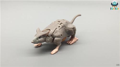 变形金刚Kingdom王国系列精灵鼠实物图曝光 变形金刚 第1张