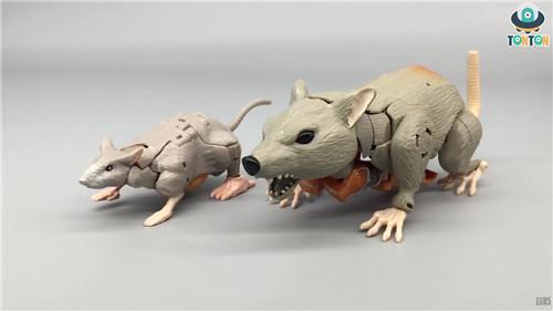 变形金刚Kingdom王国系列精灵鼠实物图曝光 变形金刚 第3张