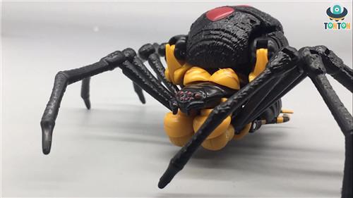 变形金刚Kingdom王国系列毒蜘蛛玩具实物图流出 变形金刚 第1张